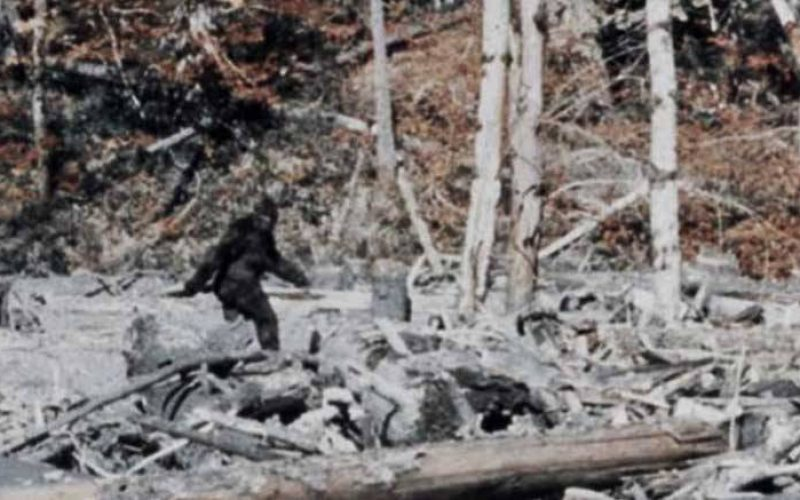 Three Times Bigfoot Chased Humans