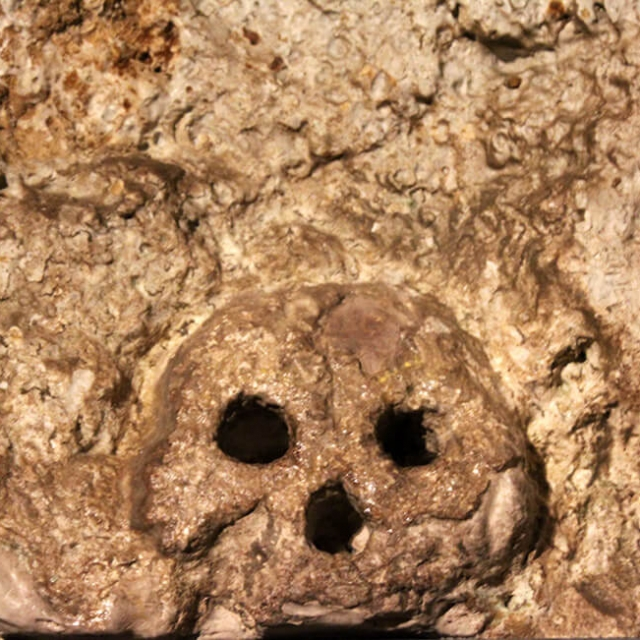 Skull In The Wall